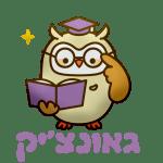 Gaonchik גאונצ'יק הכנה למבחני מחוננים_preview_rev_1